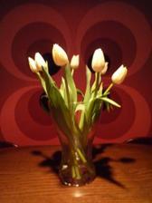 ...po oznámení krásnej novinky som od drahého dostala kytičku tulipánov...