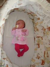 Žížalka v košíku - za 8 měsíců jí bude malý ...jako těm dvěma před ní :-)