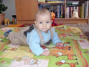 Míša 7 měsíců
