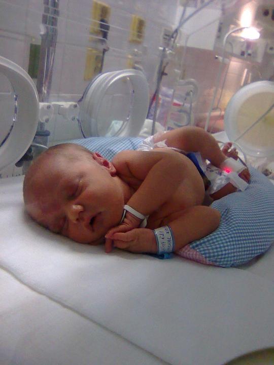 Míša v porodnici