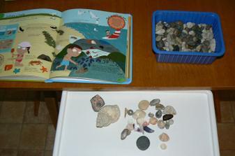 Našla jsem doma mušličky, tak jsme si dali dnes seznámení s tím,co jsou mušličky, ohmatání (když ho baví hmat) a hledání mušliček v kamínkách.