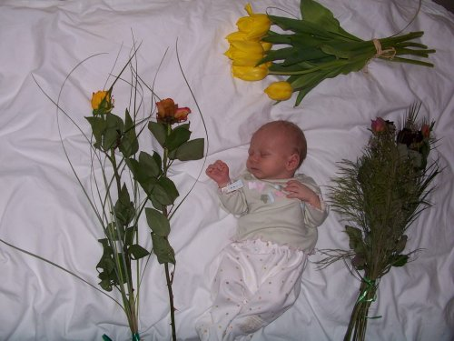 Opoustime porodnici