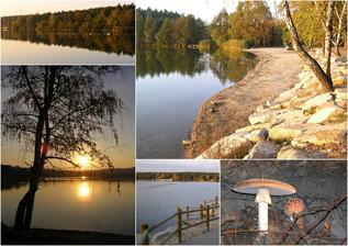 Bolevecký rybník na podzim