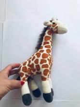 Žirafa,