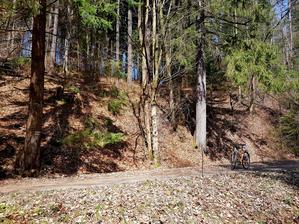 Lesem to mám domů okolo 12 km.