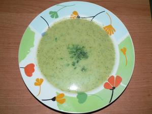 VEČEŘE: brokolicová polévka