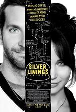 Silver Linings Playbook - Terapie láskou (r. 2012)