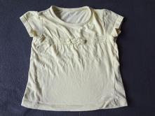 Tričko, st. bernard,98