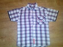 Košile, palomino,122