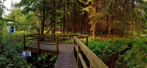 Pokud se někdy budete pohybovat v okolí Svitavy, doporučuji navštívit naučnou stezku Vodárenský les. Stezka je dlouhá něco pod 2 kiláky a vedena dřevěnými chodničkx, takže super pro prcky a kočárky.