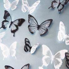 3d dekorace na zeď motýli černobílý,