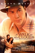 A Walk In The Clouds - Procházka v oblacích (1995)