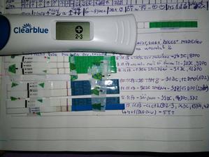 Už sada testíků, které jsem každý den dělala ... no asi jsem těhotná 💕 Čekáme druhátko 💕