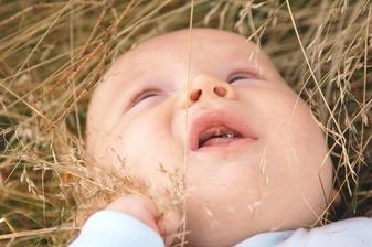 ... pak jsem se vyválel v trávě, moc se mi líbilo, jak jsem ji mohl škubat.... a ten výhled, do korun stromů... hmmm
