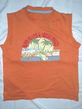 Super oranžové tílko hawai, st. bernard,134