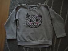 Mikina s kočičkou, 116