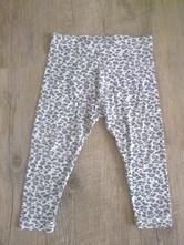 Gepardí legíny, young dimension,92