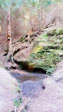 Pramen řeky Svitavy.