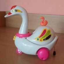 Jezdící labuť,