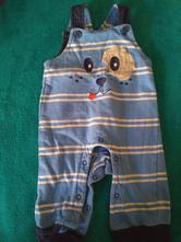 Pruhované, lacle, lacláče s pejskem, bluezoo,68