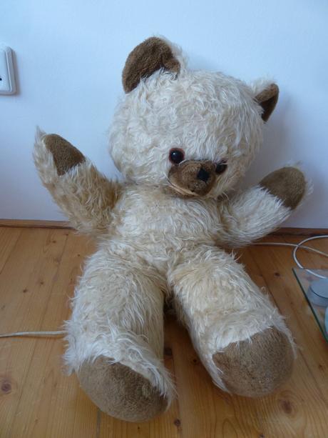 Plyšový medvěd,