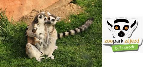 """ZOOpark Zájezd jsme navštívili ještě s malou Nelinkou, maličká, ale hezká zoo, částečně taková """"farma"""" :-) (tedy tehdy :-D)"""
