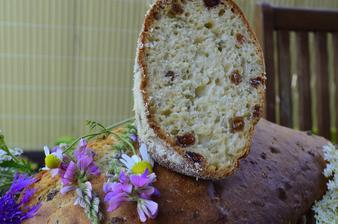 Bezový chléb s meduňkou a medem / Holunderbrot mit Zitronenmelisse und Honig