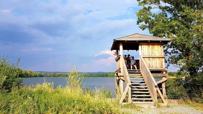 Ornitologická  pozorovatelná u chomoutovských jezer.