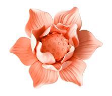 Silikonová forma květ maxi 01 - skladem,