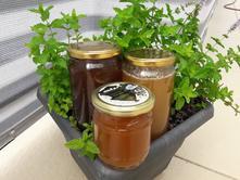 Výtečný domácí med přímo od včelaře,