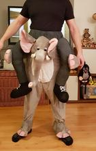 Kostym jezdec na slonovi,