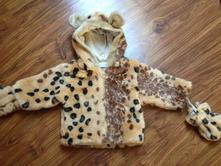Kožíšek  leopardí, 62