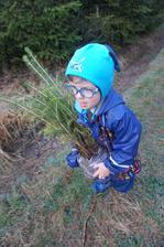 Moc rádi pomáhají v lese