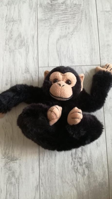 Černá gorila,