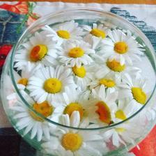 Když vám dítě natrhá kytičku ale bez stonku :-). Skleněná miska na stole udělala velkou parádu :-)