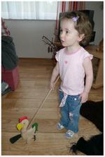 Boží dárek od dědy, všem doporučujeme, Anička nechce dát kohouta z ruky :)