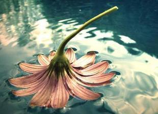 Být silný znamená udělat někomu radost, i když sami máme bolest v srdci...