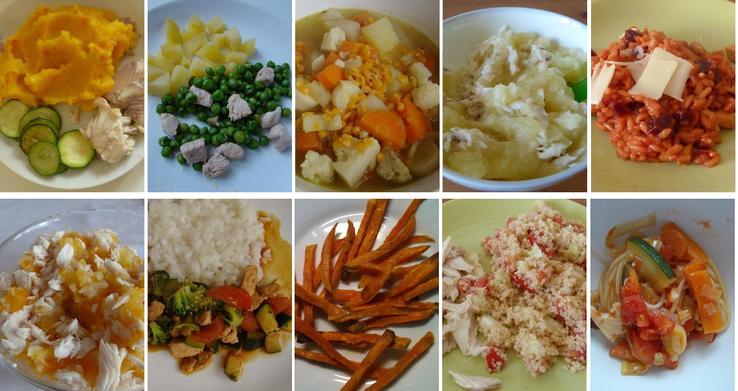 Různé obědy a večeře pro děti okolo jednoho roku: pstruh s cuketou a pyré z brambor a dýně, kuřecí maso s hráškem s bramborami, polévka ze zeleniny (mrkve, petržele, pórku a květáku) a červené čočky, mořský vlk s pyré z brambor a pastiňáku a rizoto s krůtím masem a červenou řepou se sýrem, pstruh s bramborami, mrkví a celerem, kuřecí maso se zeleninou (brokolicí, červenou paprikou a cuketou), máslem a rýží, v troubě pečené hranolky z batátů, pstruh s kuskusem a rajčaty a špagety s olivovým olejem a zeleninou (mrkví, cuketou, lilkem, fenyklem, pórkem a rajčaty)
