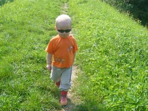 jdeme do lesa :-)