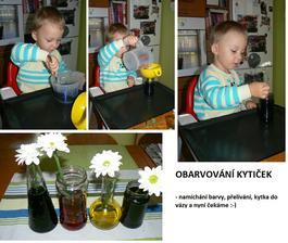 Zdroj: Mili - montessoridoma.cz a připomenutí od zuhur. Foto barevných kytiček dodám za pár dní.